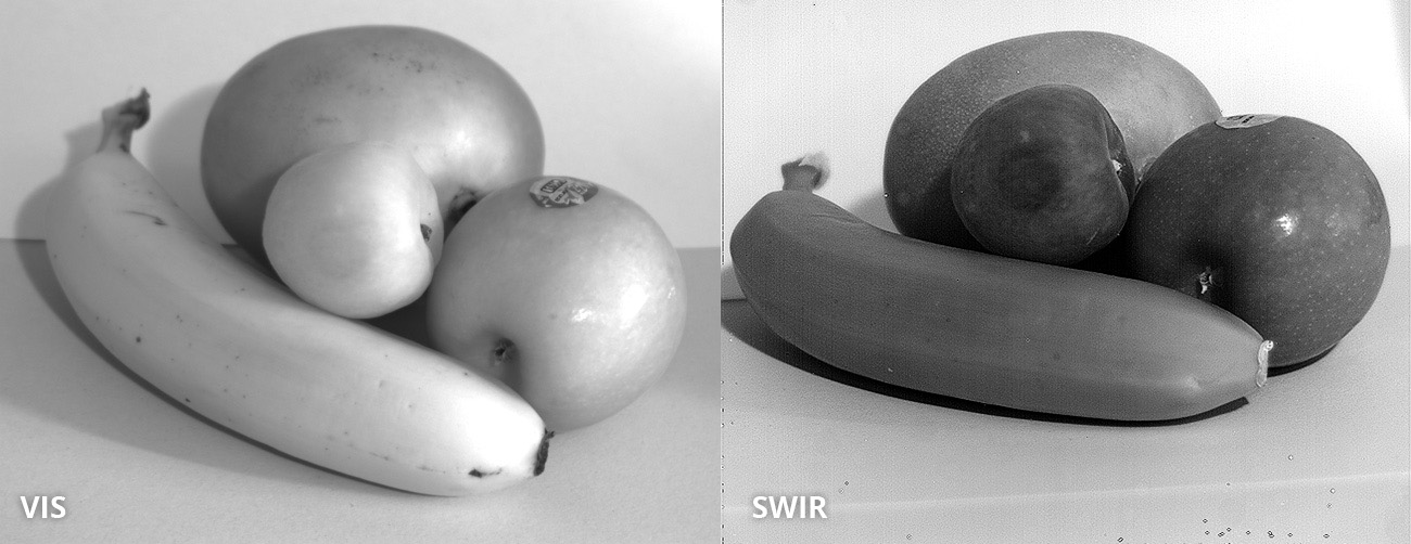 Detection of bruises on fruit. SWIR image taken with Opto E SW05020 lens and ABS GmbH SWIR camera IK1523. Image courtesy of ABS GmbH